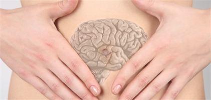 cerveau-ventre-osteopathie
