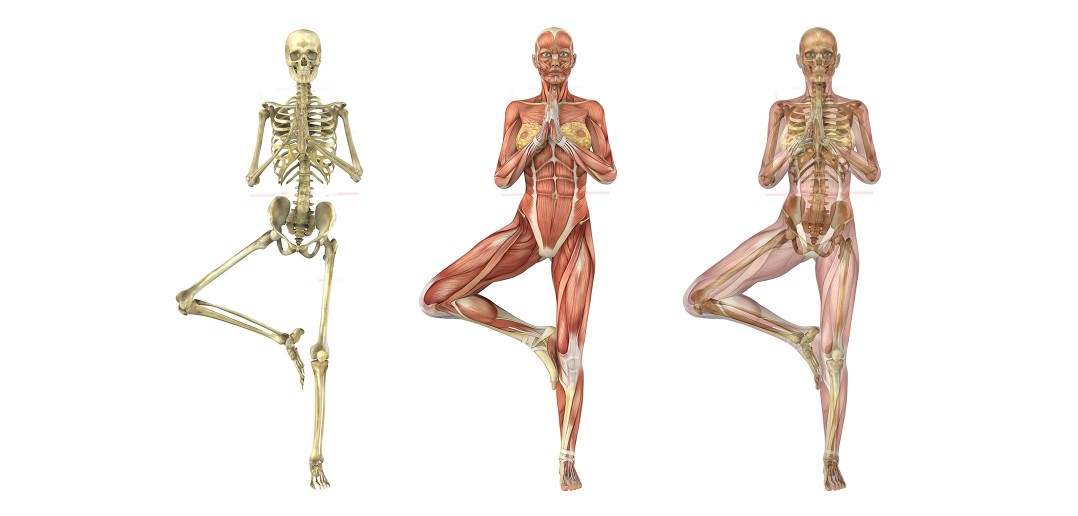 reequilibre-corps-osteopathie