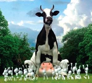 Pourquoi arrêter le lait de vache ? Les conseils de votre ostéo !
