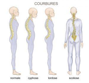 traitement-colonne-osteopathie