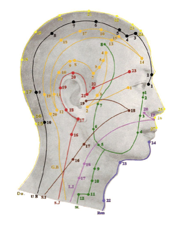 meridiens-face-traitement-nerf-V-acupuncture